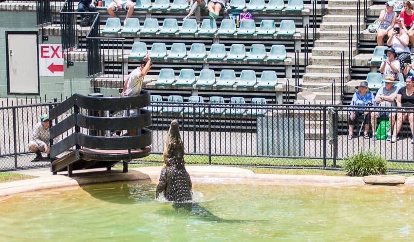 Noosa day trips - Australia Zoo