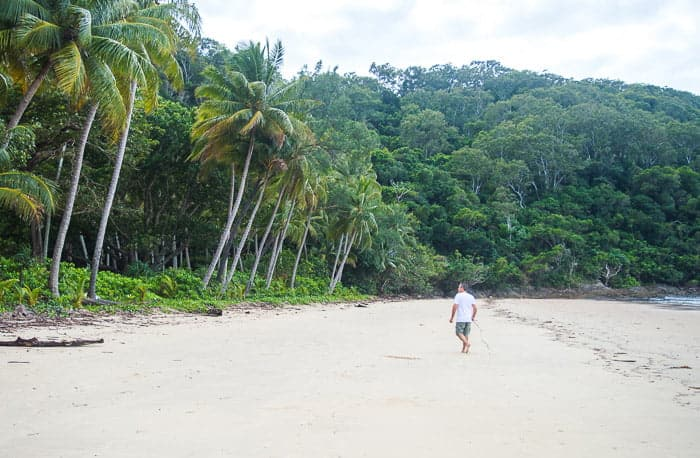 Daintree Rainforest Beaches