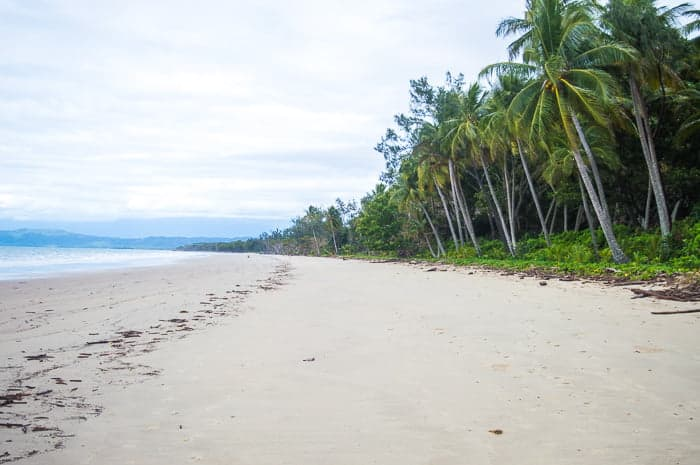Daintree Rainforest Beaches | Cape Kimberley