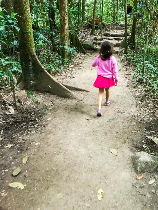 Daintree Rainforest Walks | Mossman Gorge