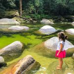 Daintree Tours – Things to do in the Daintree