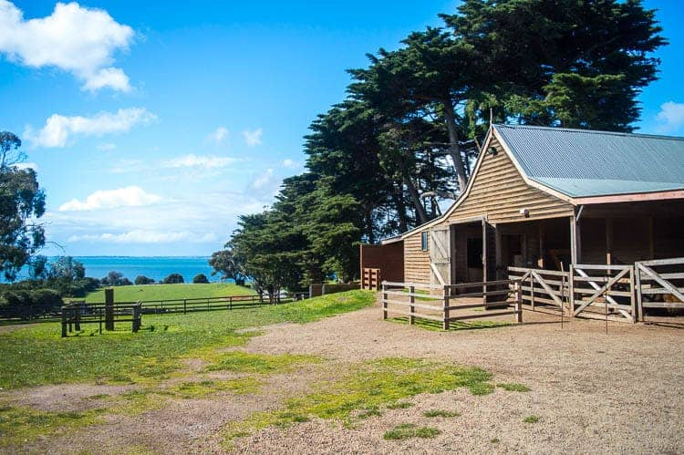 Phillip Island Attractions