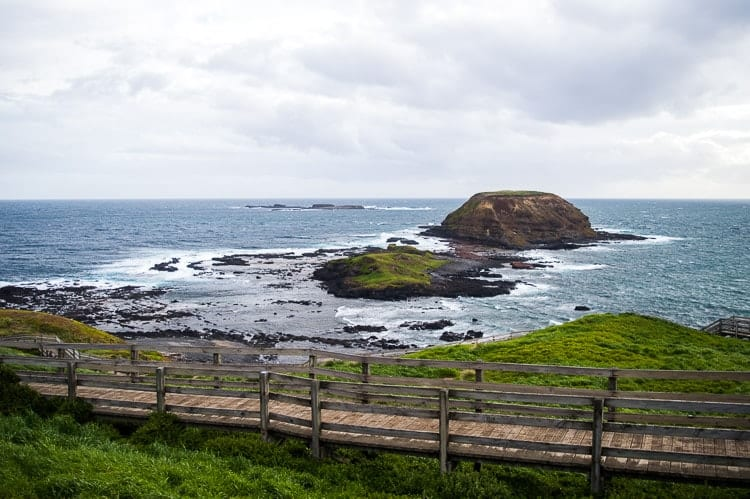 Nobbies Phillip Island
