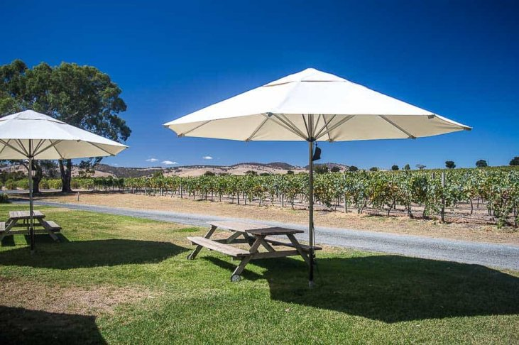 Best wineries to visit in Barossa with kids: Turkey Flat
