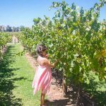 The Best Barossa Wineries to Visit with Kids