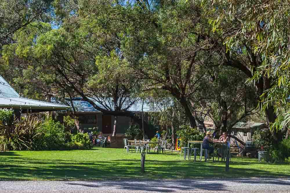 Best Barossa Wineries with kids: Whistler Wines