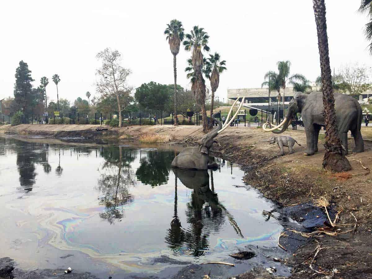 La Brea Tar Pit - Fun things to do in LA with kids
