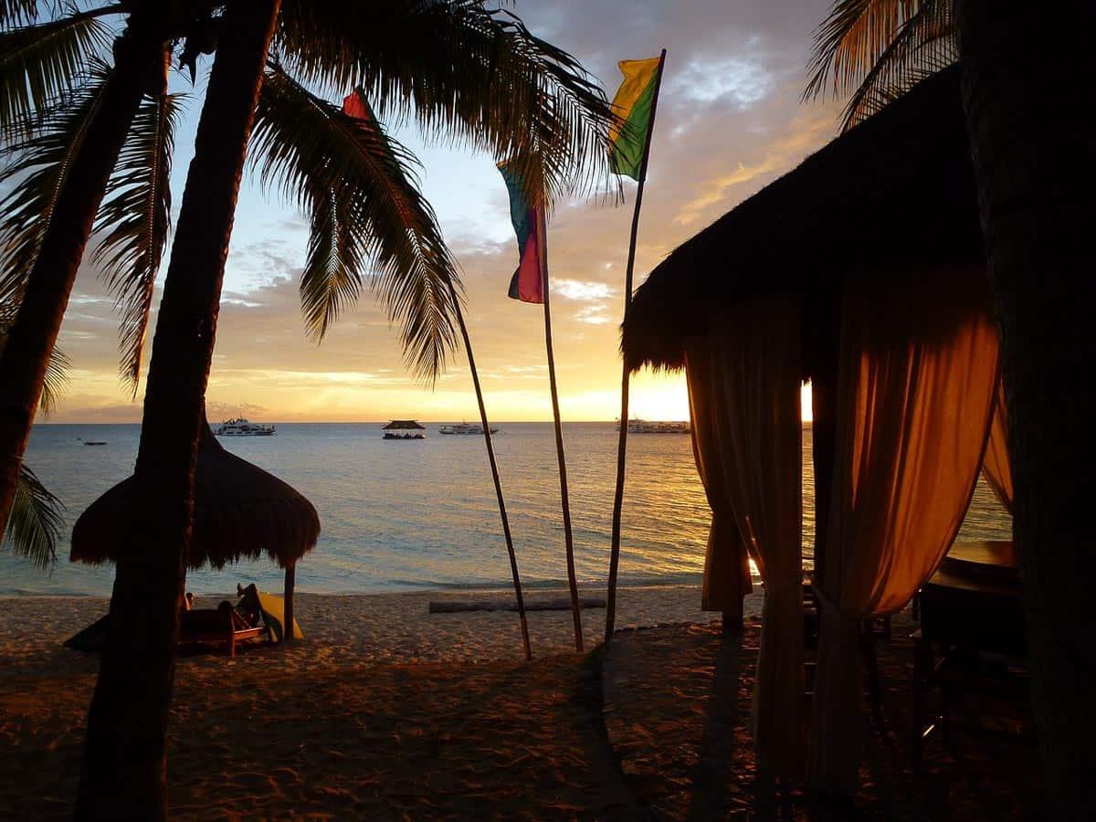 coco-grove - Siquijor - The Philippines