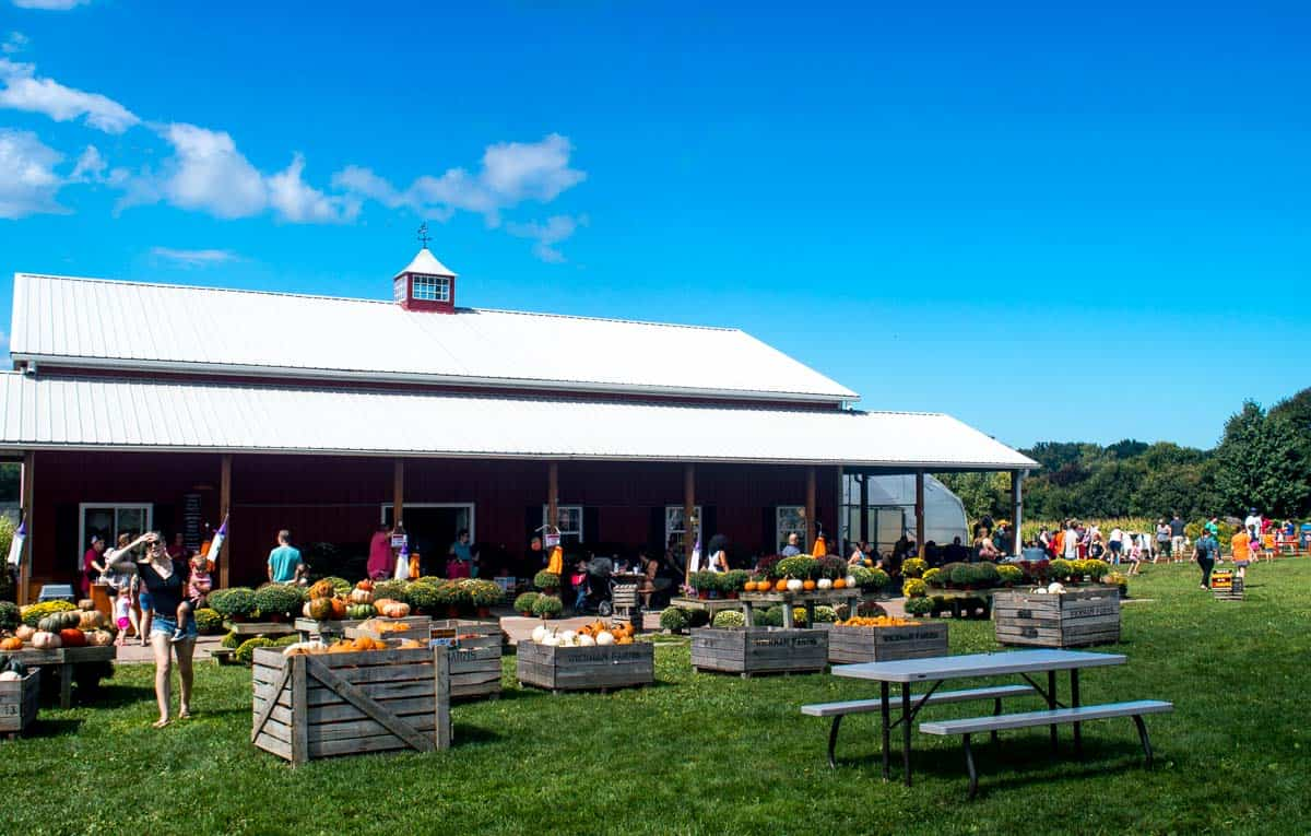 Wickham Farms - What to do in Rochester NY