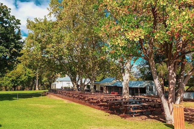 Things to do around Perth with kids