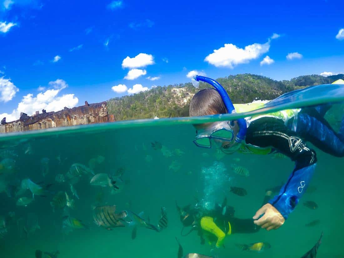 Tangalooma Wrecks Snorkeling Tour