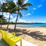 Best Things to do in Airlie Beach with Kids