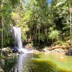 The Best Mt Tamborine Accommodation for Families