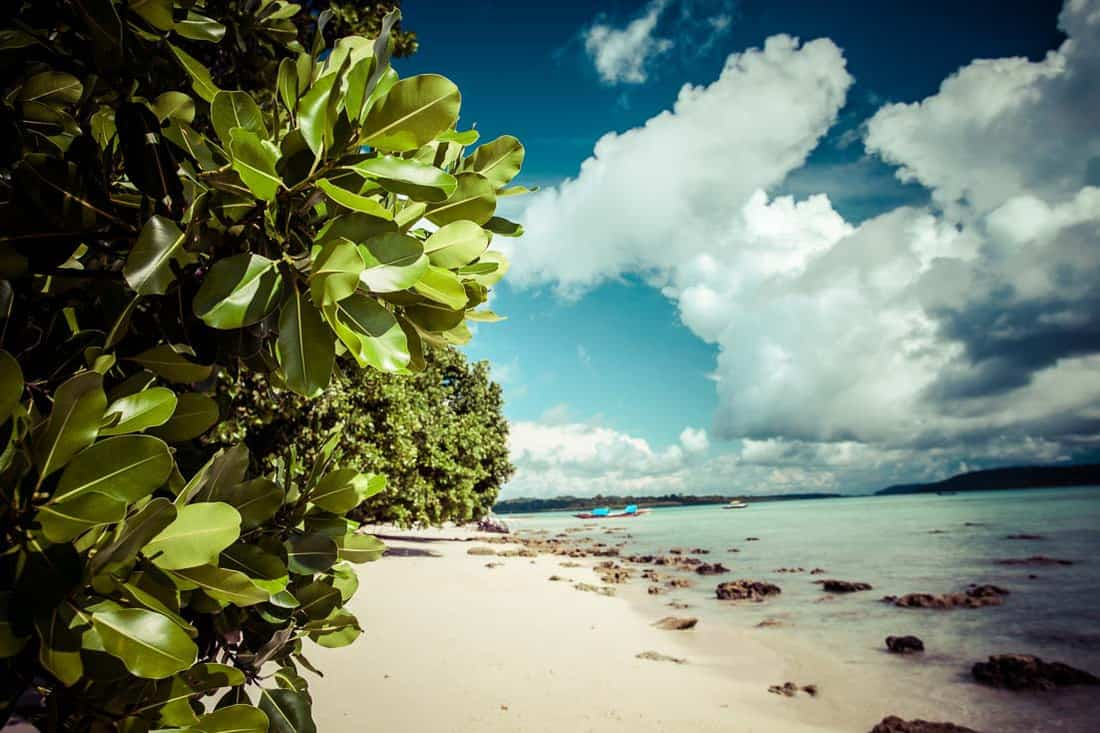 Havelock Island blue sky with white clouds, Andaman Islands, Ind