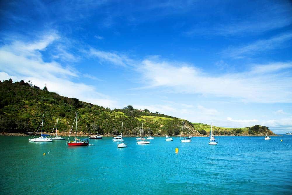 Half moon bay in Waiheke island - Best family holidays NZ