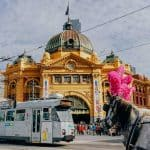 35 of the Best Things to do in Melbourne with Kids
