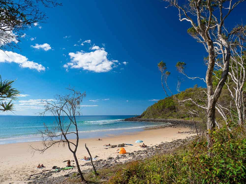 Things to do in Noosa with Kids