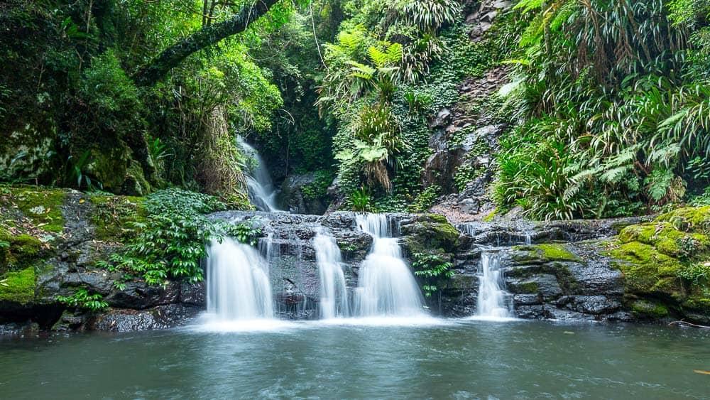 Elabana Falls O'Reilly's